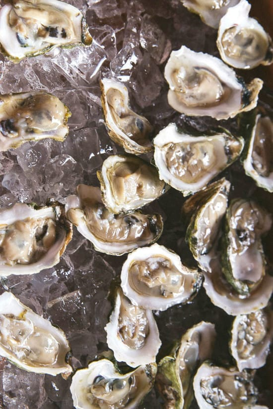 charleston wine and food festival oyster roast
