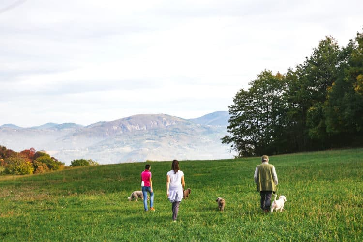 visit an agriturismo in italy for a fun day out with kids in italy