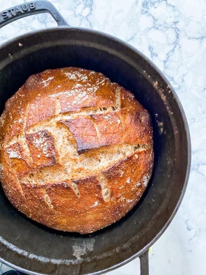no knead bread a COVID-19 hobby
